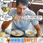 L'ape Tito vien mangiando