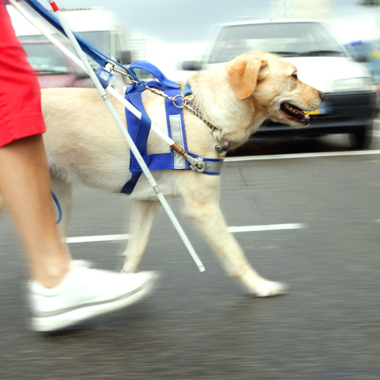 Un cieco vuole attraversare la strada