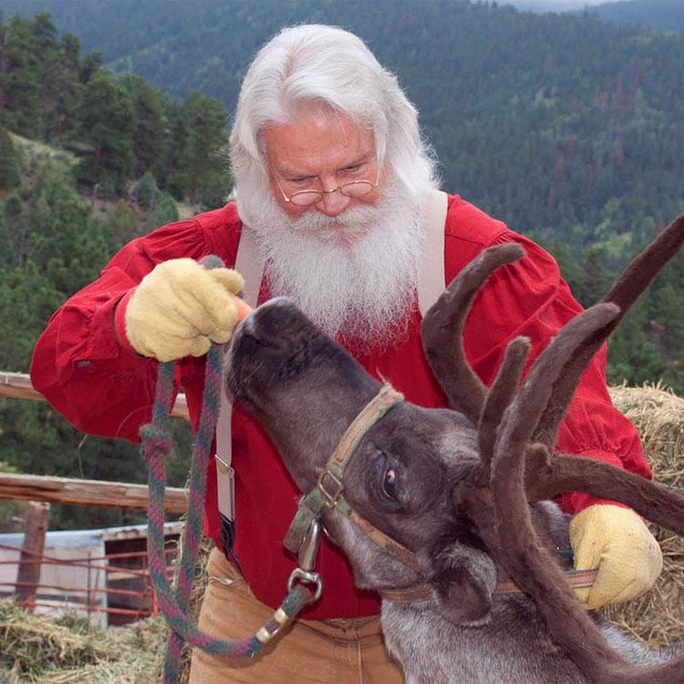Problemi della vigilia di Natale